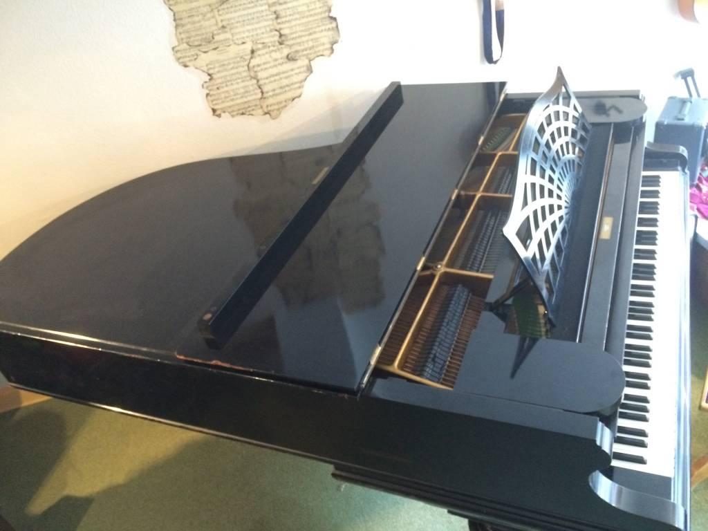 C. Bechstein Modell B 203 - BJ 1909 - Guter Zustand