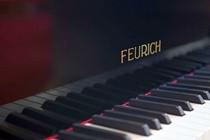FEURICH Mod. 218 - Concert I Schwarz poliert/Messing