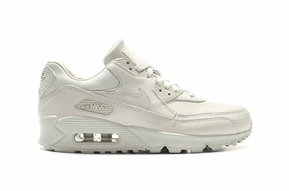 Air Max 90 Premium Pinnacle WMNS