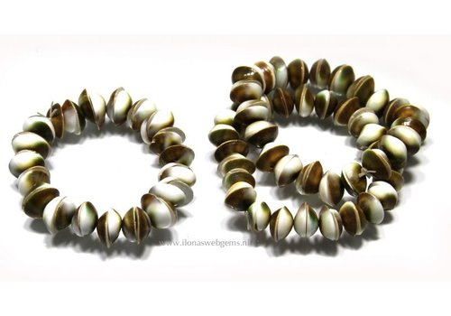 Shiva Shell bracelet approx. 13mm