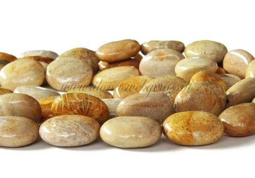Fossil Koraal kralen ovaal ca. 20x16x8mm