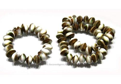 12 Stück Shiva Shell weiß / grün um 11x3mm