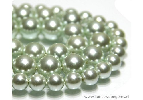 Shell Pearl round app. 12mm