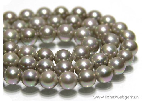 Shell Pearl round app. 6mm