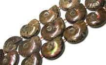 Ammoniten / Fossil Perlen