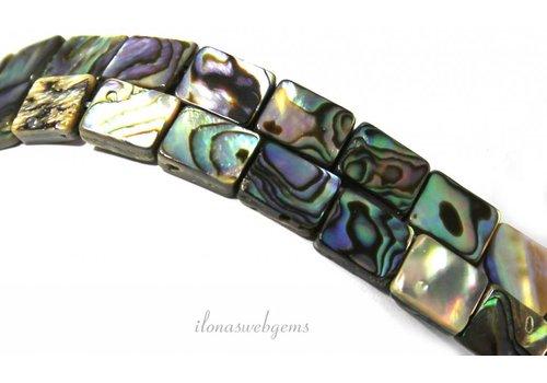 Abalone beads around 10x8x3mm