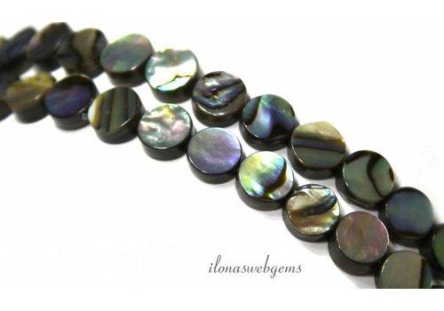 Abalone Perlen Münze über 6.5x3mm