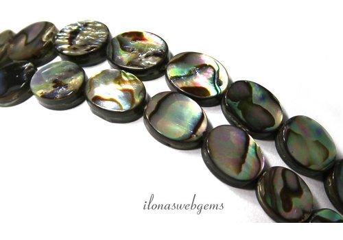 Abalone kralen ovaal ca. 10x8x3mm