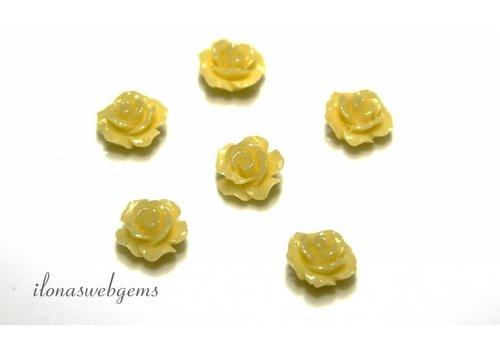Koraal roosjes (kraal)