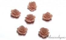 Koraal roosje roze kraal