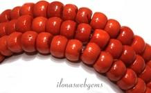 Rote Korallen-Perlen 'alte holländische' über 10-11x8mm