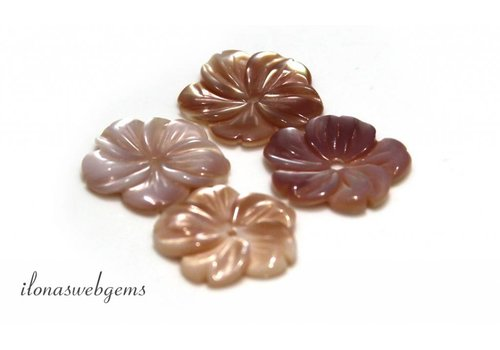 Pink Shell Perle rund ca. 16mm