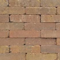Abbeystones 20x5x7cm bont