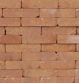 Abbeystones 20x5x7cm avondzon