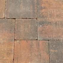 Abbeystones wildverband 6cm zomerbont