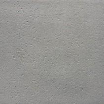 Xtra Grijs 100x100x5cm