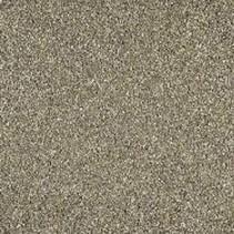 BIGBAG Fundyking 1-3mm