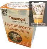 Trapango Fruchfliegen-Lebendfalle