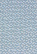 Cloudlet Blue