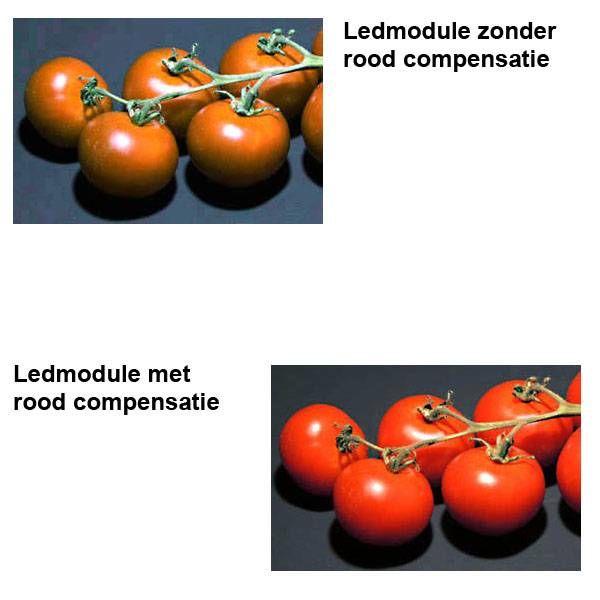 Led-R Reflector Module Mini Compact LCD
