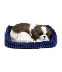 Perfect Petzzz Shih Tzu Perfect Petzzz