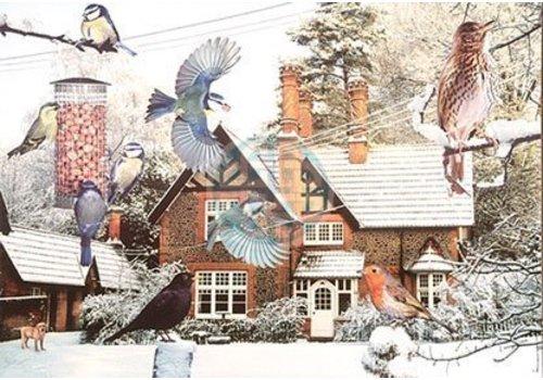 The House of Puzzles A Bird's Eye View Puzzel 1000 Stukjes