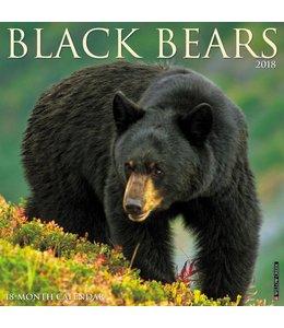 Willow Creek Black Bears Kalender 2018