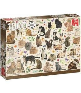 Jumbo Katten Poster Puzzel 1000 Stukjes Franciens Katten