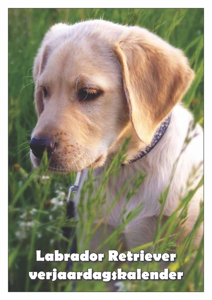 Labrador Retriever Verjaardagskalender