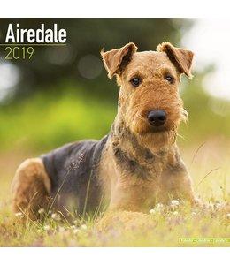 Avonside Airedale Terrier Kalender 2019