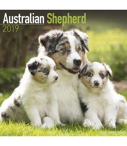 Avonside Australian Shepherd Kalender 2019