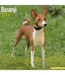 Avonside Basenji Kalender 2019