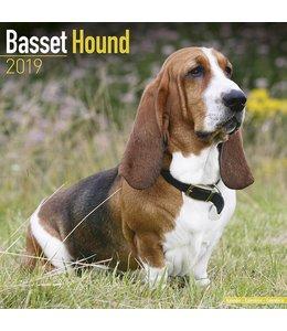 Avonside Basset Hound Kalender 2019