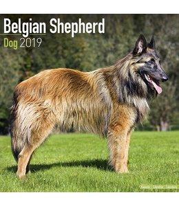 Avonside Belgische Herder Kalender 2019