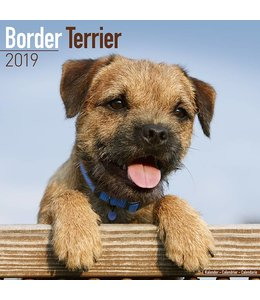 Avonside Border Terrier Kalender 2019