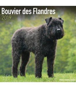 Avonside Bouvier Kalender 2019 (euro)