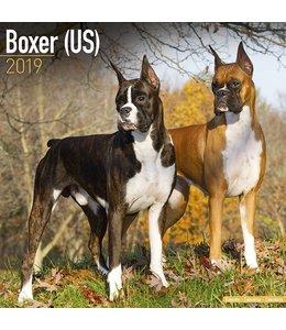 Avonside Boxer Kalender 2019 (us)