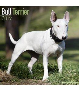 Avonside Bull Terrier Kalender 2019