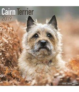 Avonside Cairn Terrier Kalender 2019