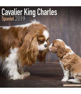 Avonside Cavalier King Charles Spaniel Kalender 2019