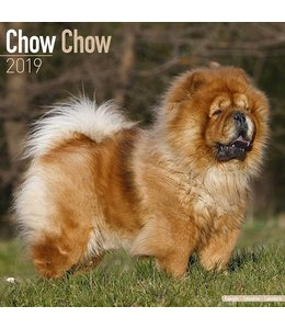 Avonside Chow Chow Kalender 2019