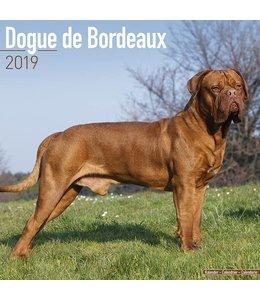 Avonside Bordeaux Dog Kalender 2019