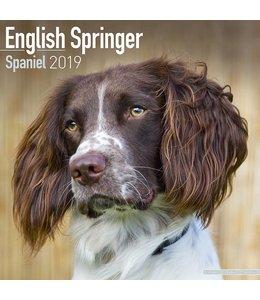 Avonside Engelse Springer Spaniel Kalender 2019 (euro)