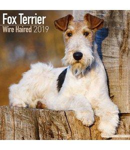 Browntrout Fox Terrier Kalender Ruwhaar 2019