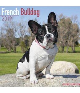 Avonside Franse Bulldog Kalender 2019