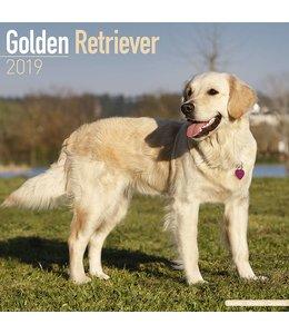 Avonside Golden Retriever Kalender 2019
