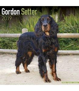 Avonside Gordon Setter Kalender 2019