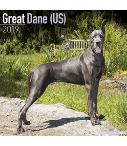 Avonside Duitse Dog Kalender 2019 (us)