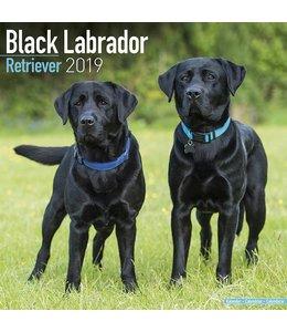 Avonside Labrador Retriever Zwart Kalender 2019