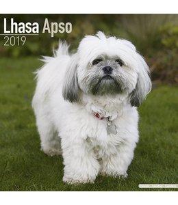 Avonside Lhasa Apso Kalender 2019